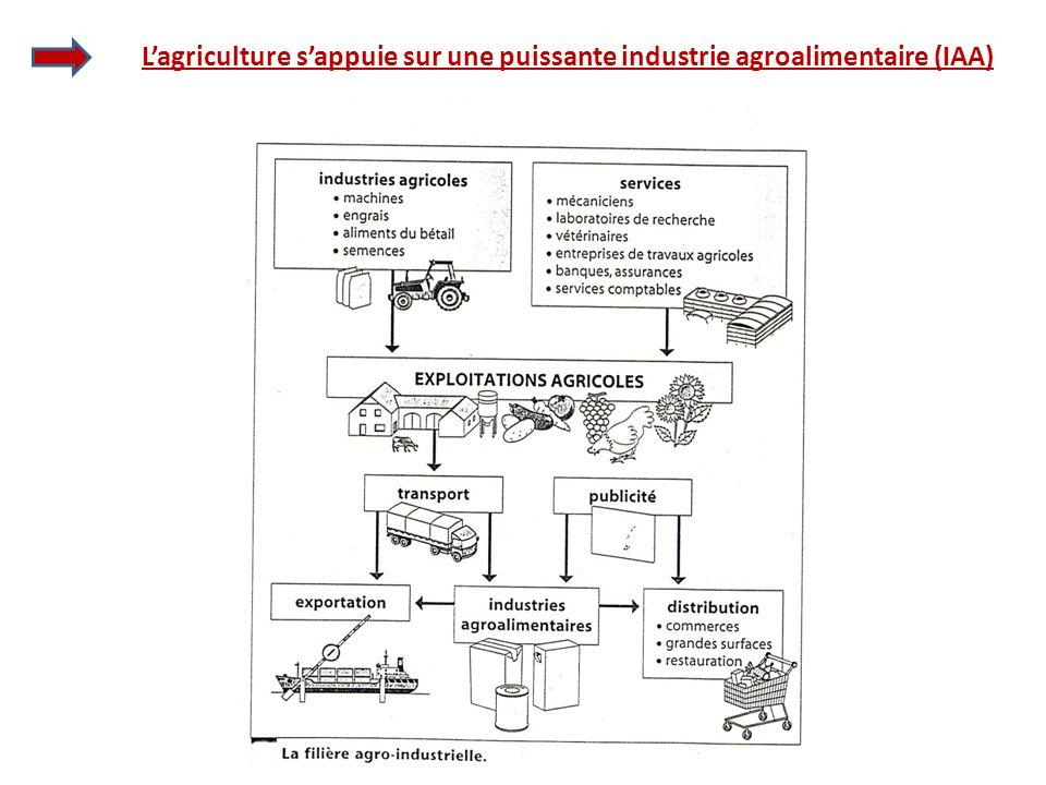 L'agriculture s'appuie sur une puissante industrie agroalimentaire (IAA)