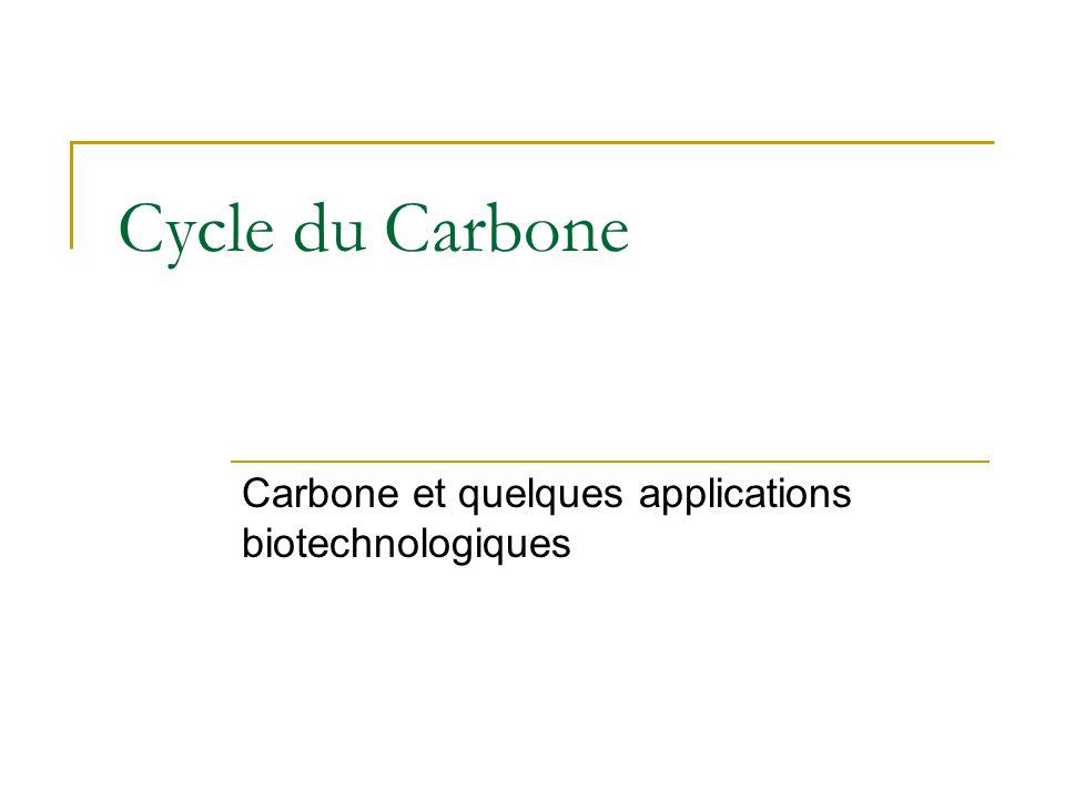 Carbone et quelques applications biotechnologiques
