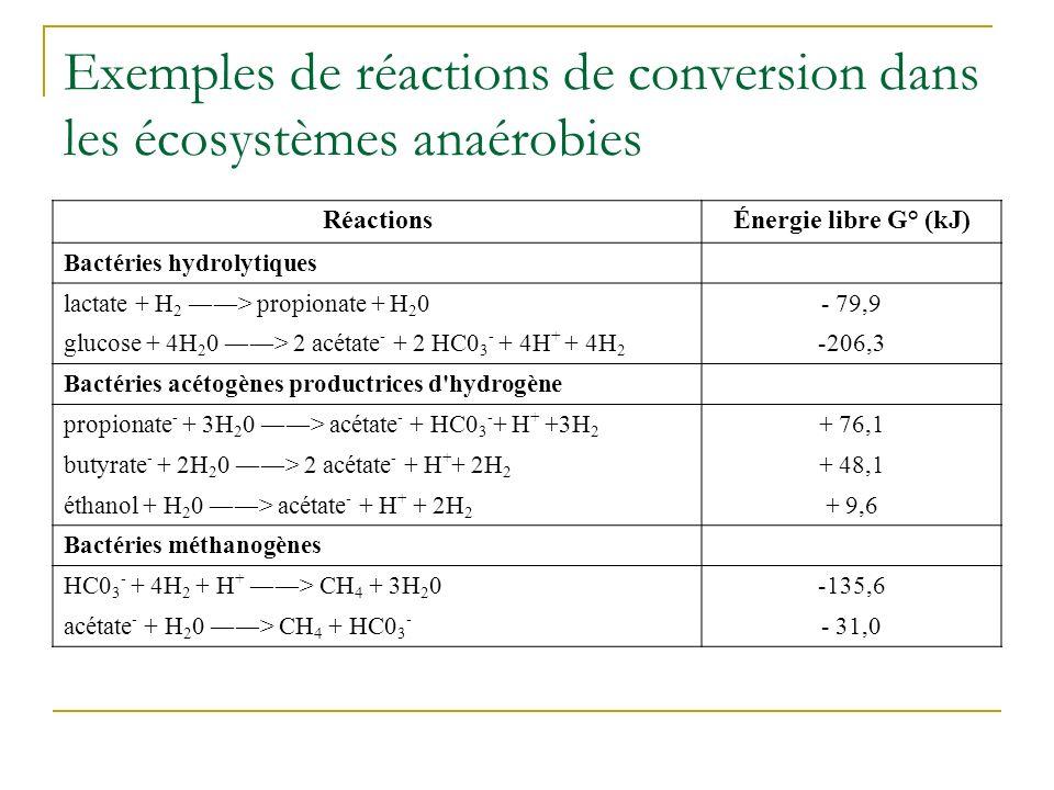 Exemples de réactions de conversion dans les écosystèmes anaérobies
