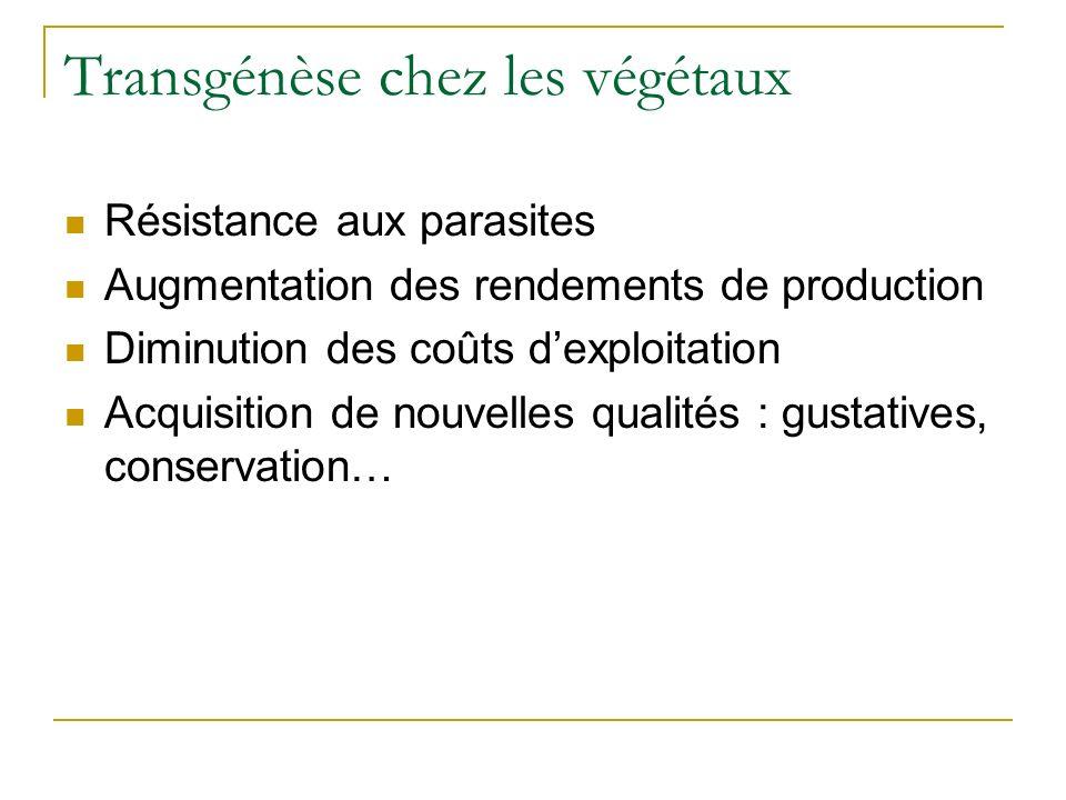 Transgénèse chez les végétaux