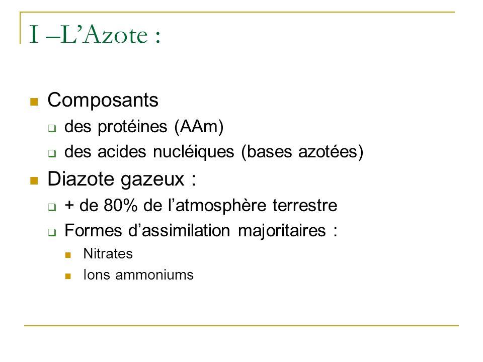 I –L'Azote : Composants Diazote gazeux : des protéines (AAm)