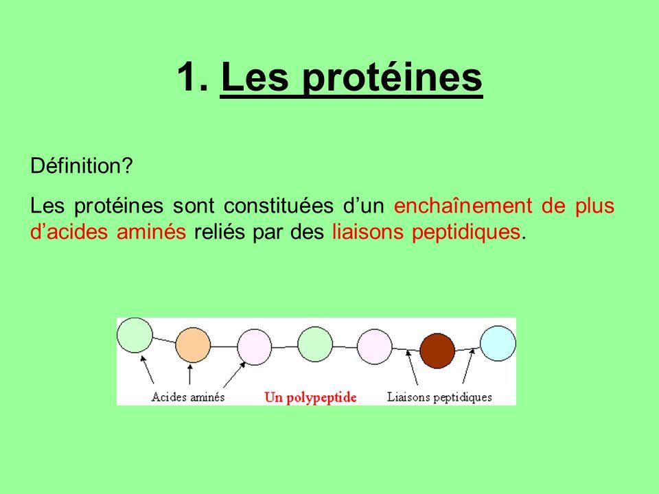 1. Les protéines Définition