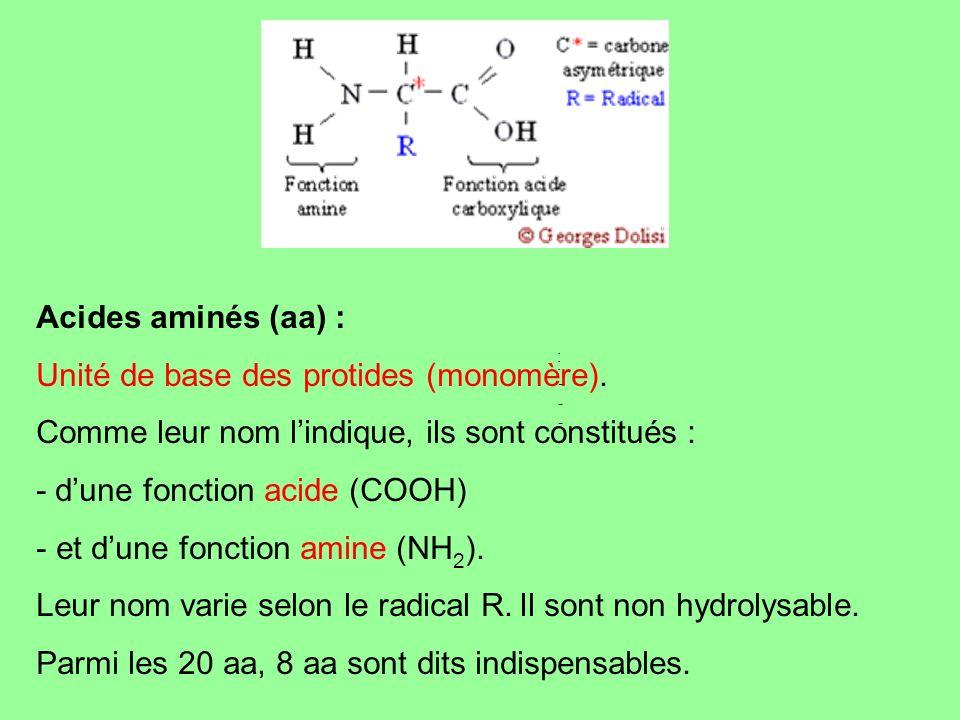 Unité de base des protides (monomère).