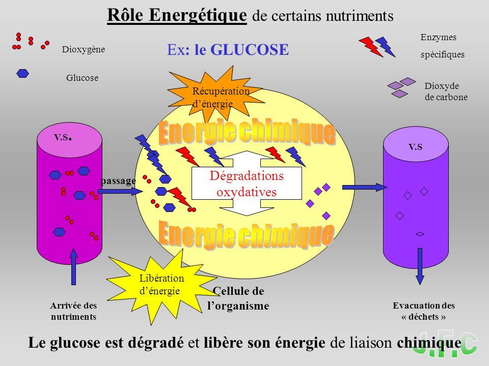 Energie chimique Energie chimique