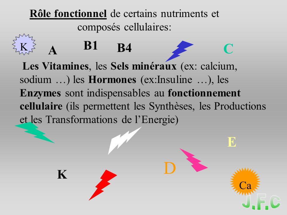 Rôle fonctionnel de certains nutriments et composés cellulaires: