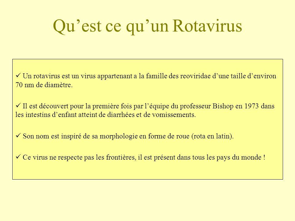 Qu'est ce qu'un Rotavirus
