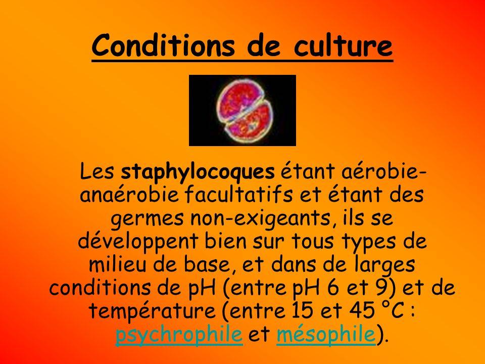 Conditions de culture