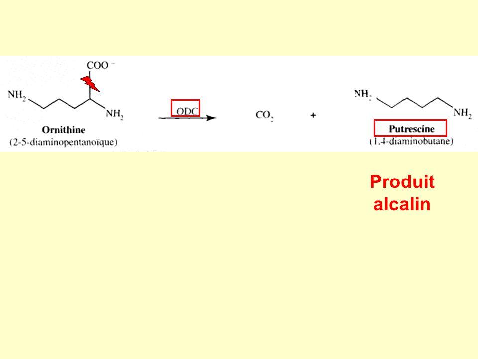 Produit alcalin