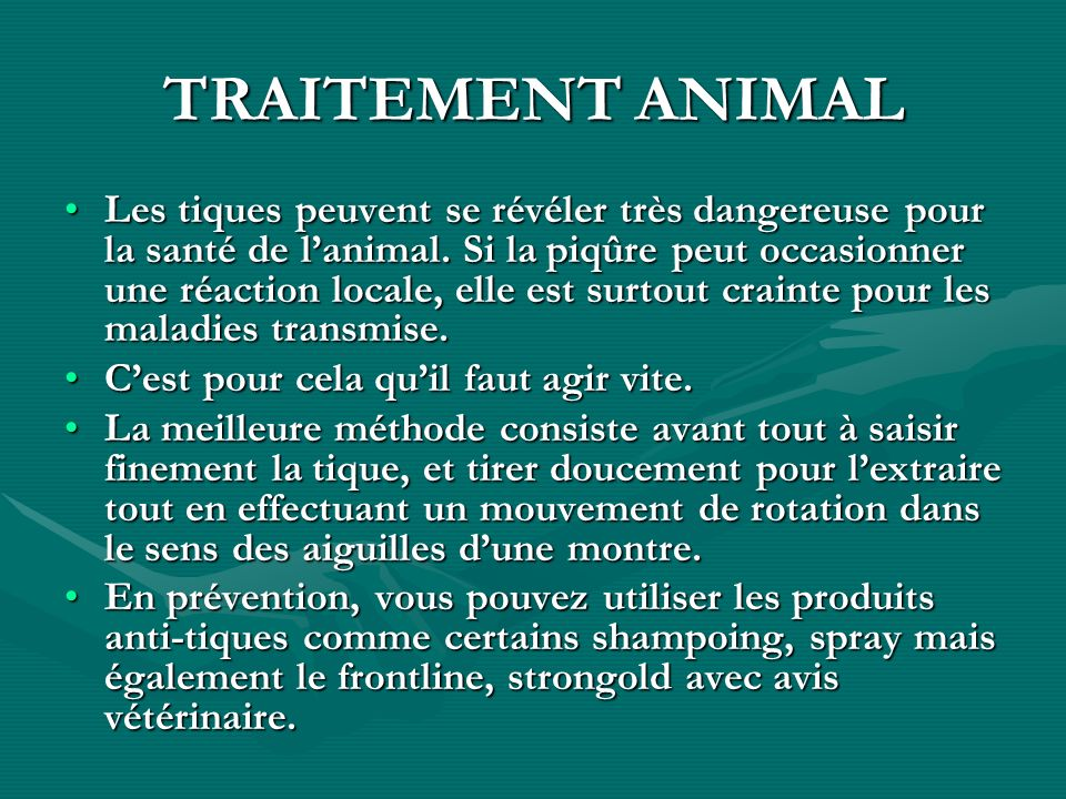 TRAITEMENT ANIMAL