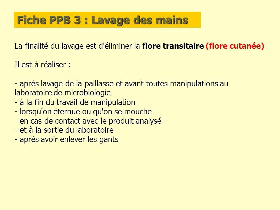 Fiche PPB 3 : Lavage des mains