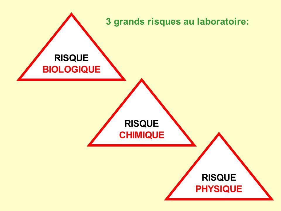 RISQUE BIOLOGIQUE 3 grands risques au laboratoire: RISQUE CHIMIQUE RISQUE PHYSIQUE
