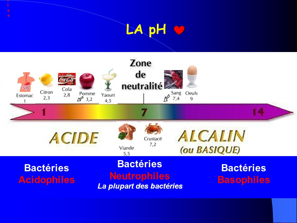 LA pH Bactéries Bactéries Basophiles Neutrophiles