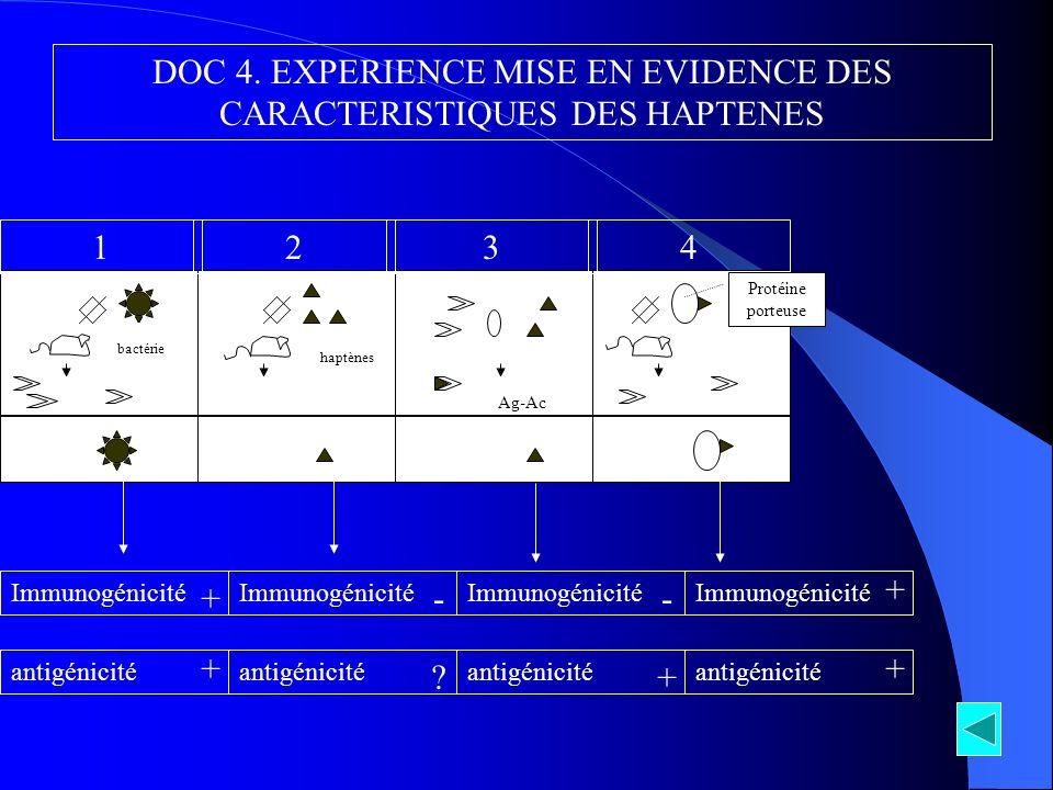 DOC 4. EXPERIENCE MISE EN EVIDENCE DES CARACTERISTIQUES DES HAPTENES