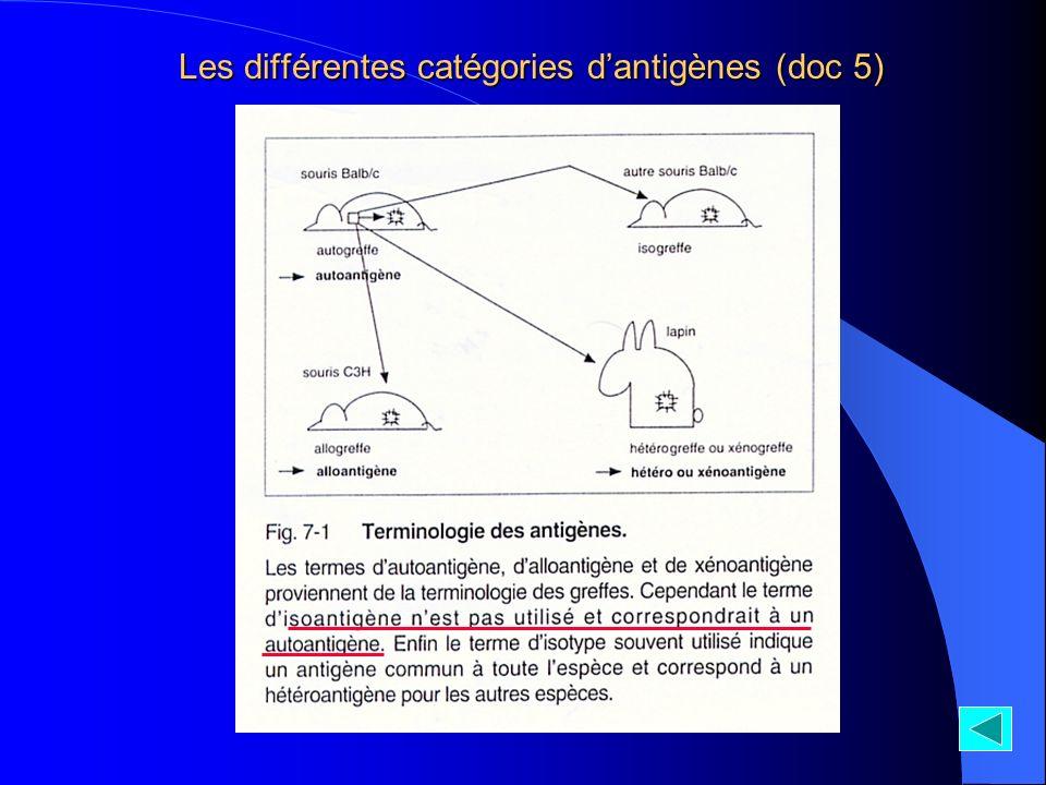 Les différentes catégories d'antigènes (doc 5)