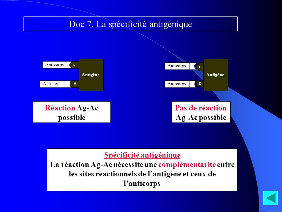 Spécificité antigénique