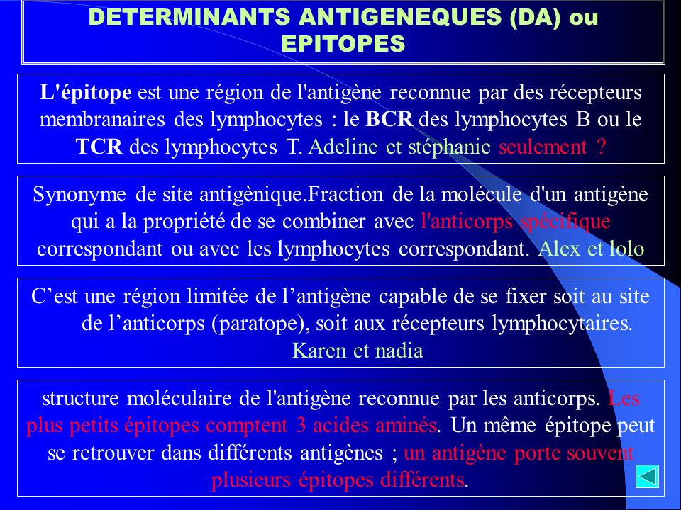 DETERMINANTS ANTIGENEQUES (DA) ou EPITOPES