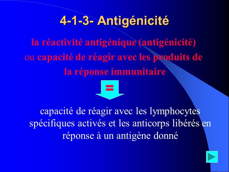 la réactivité antigénique (antigénicité)