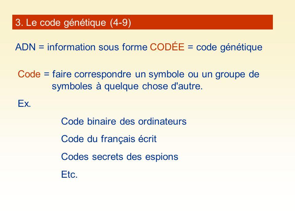 3. Le code génétique (4-9) ADN = information sous forme CODÉE = code génétique.