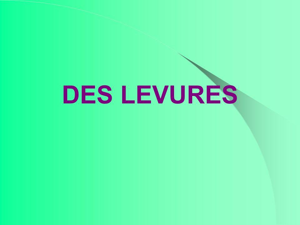 DES LEVURES