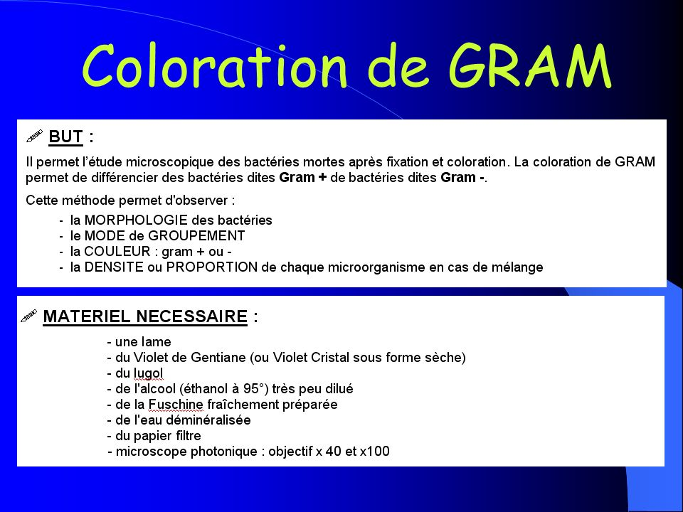 Coloration de GRAM