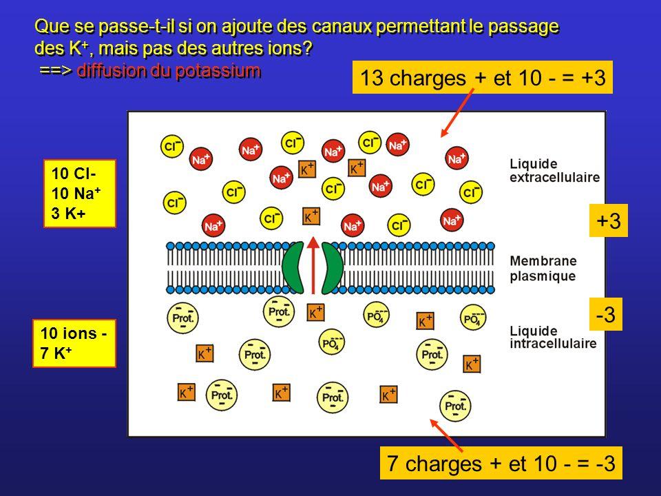 13 charges + et 10 - = +3 +3 -3 7 charges + et 10 - = -3
