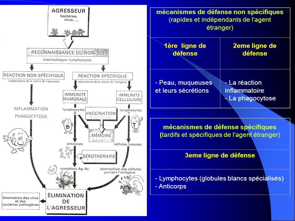 mécanismes de défense non spécifiques