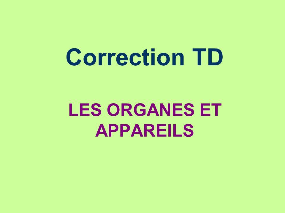 Correction TD LES ORGANES ET APPAREILS