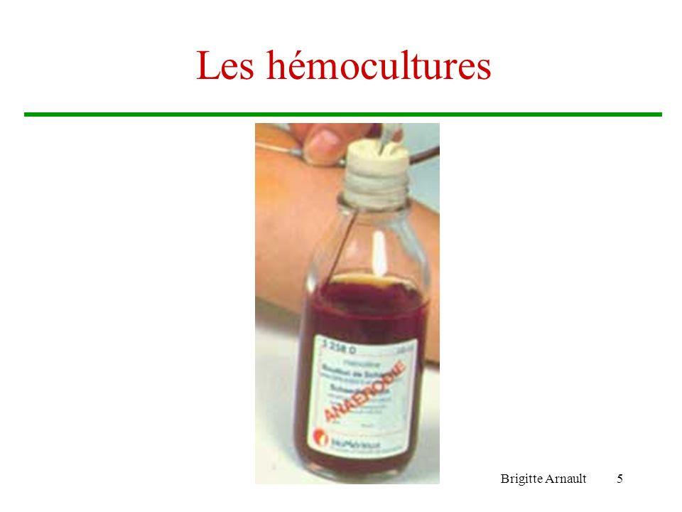 Les hémocultures Brigitte Arnault