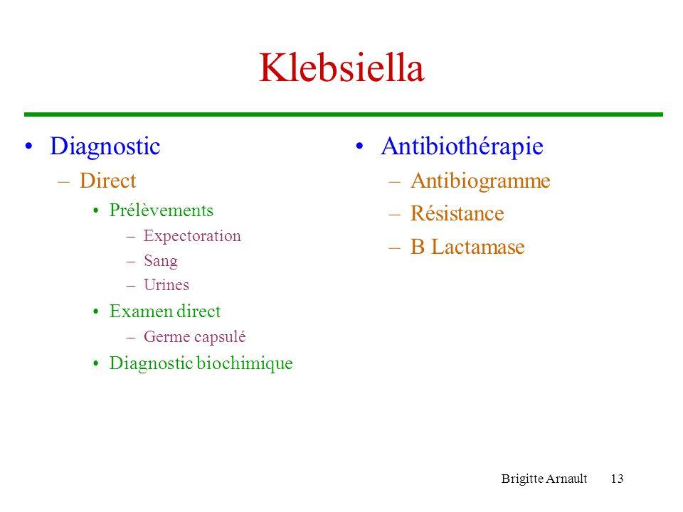 Klebsiella Diagnostic Antibiothérapie Direct Antibiogramme Résistance