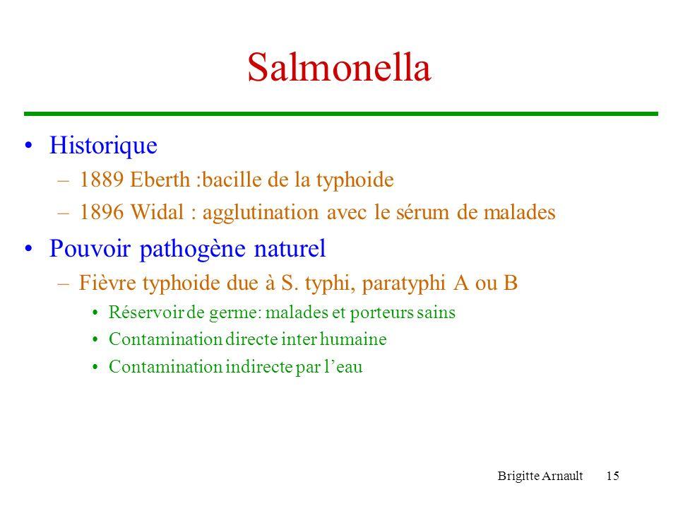 Salmonella Historique Pouvoir pathogène naturel