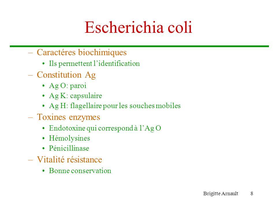 Escherichia coli Caractéres biochimiques Constitution Ag