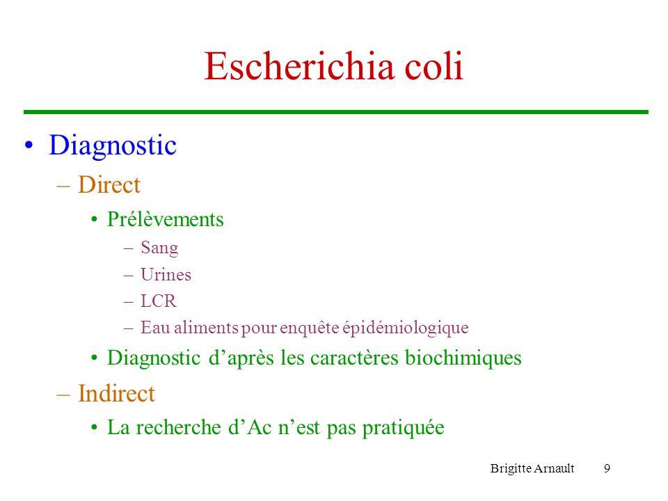 Escherichia coli Diagnostic Direct Indirect Prélèvements