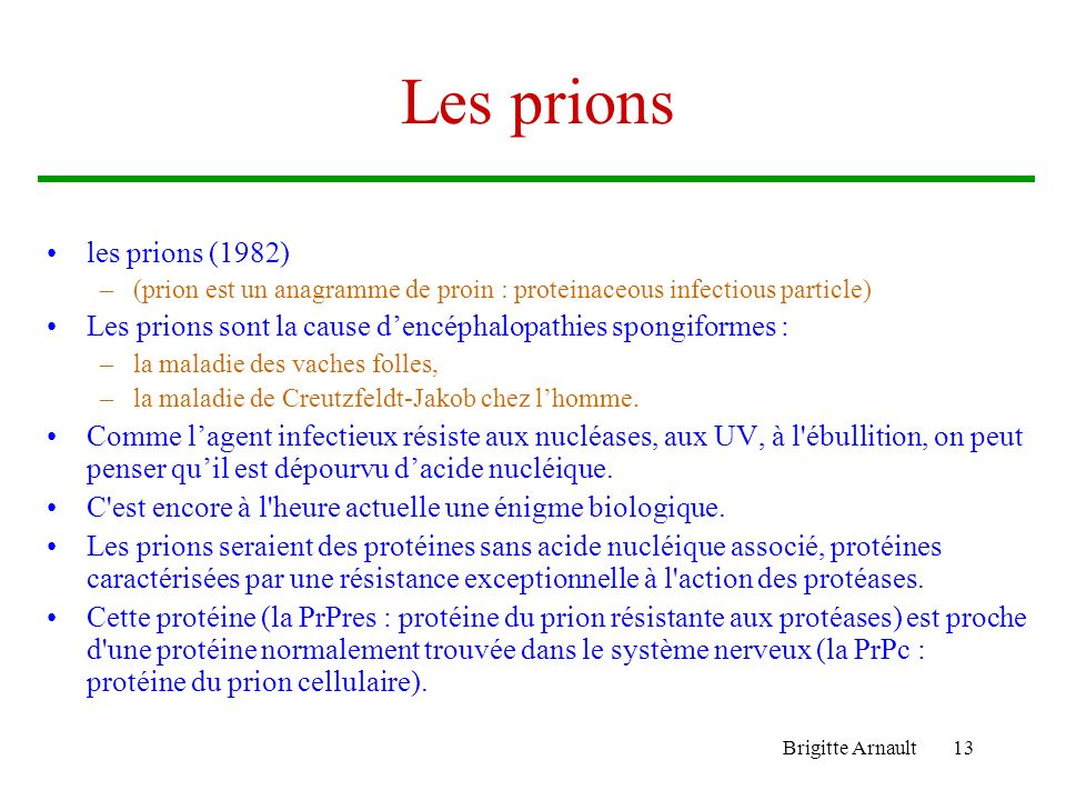 Les prions les prions (1982)