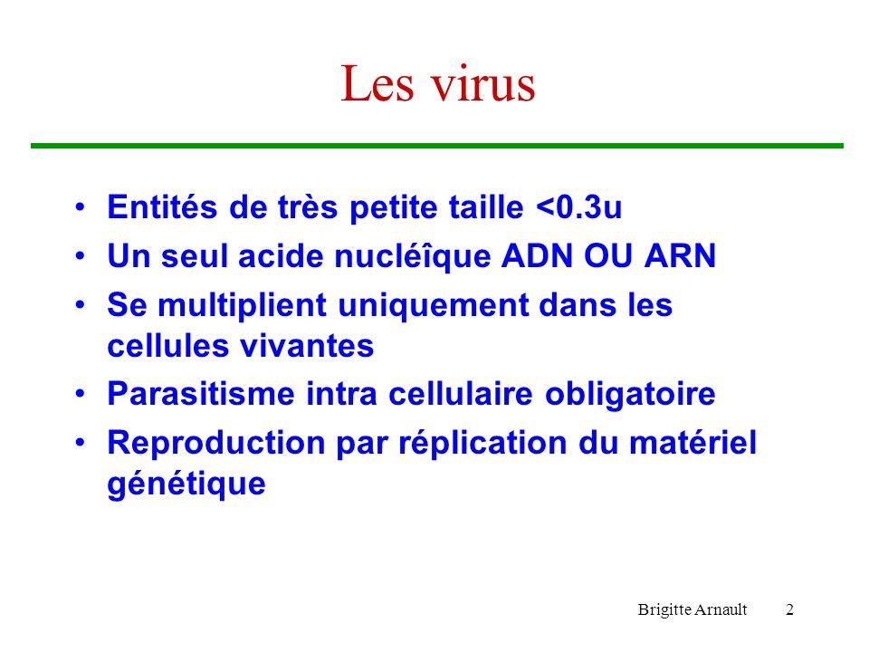 Les virus Entités de très petite taille <0.3u