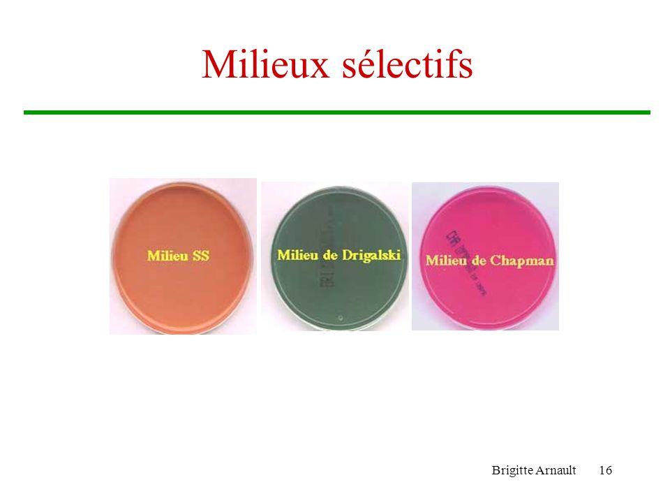 Milieux sélectifs Brigitte Arnault