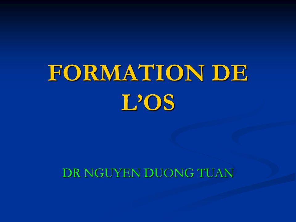 FORMATION DE L'OS DR NGUYEN DUONG TUAN