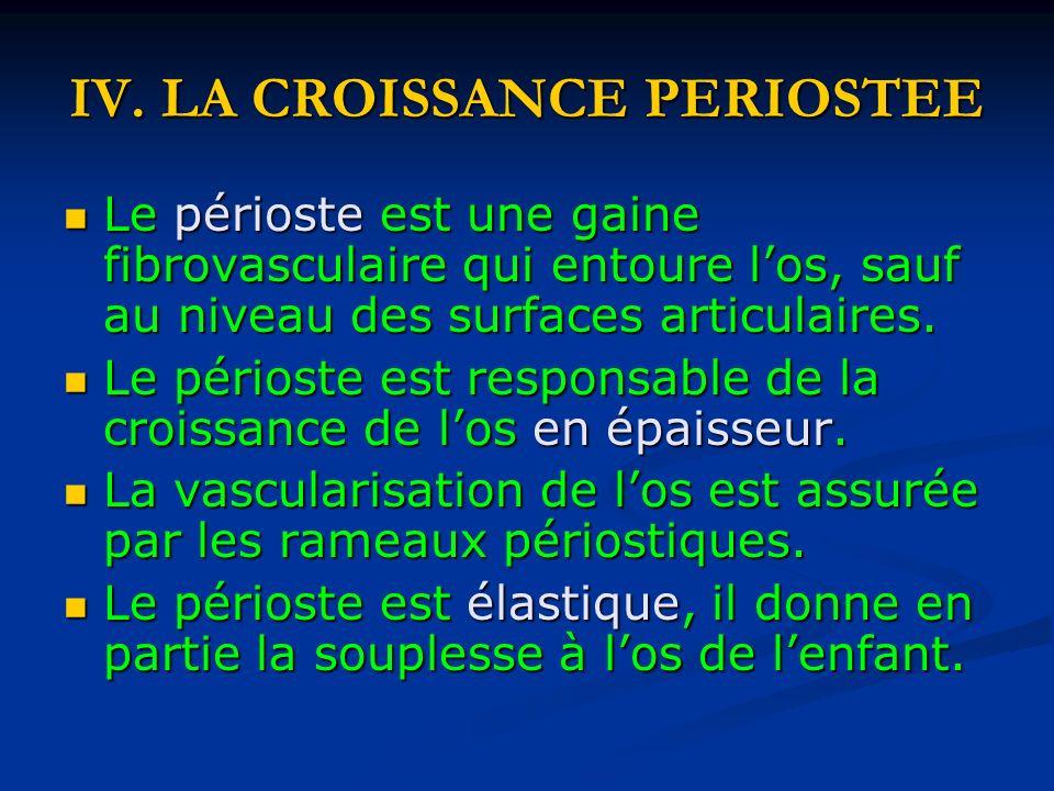 IV. LA CROISSANCE PERIOSTEE