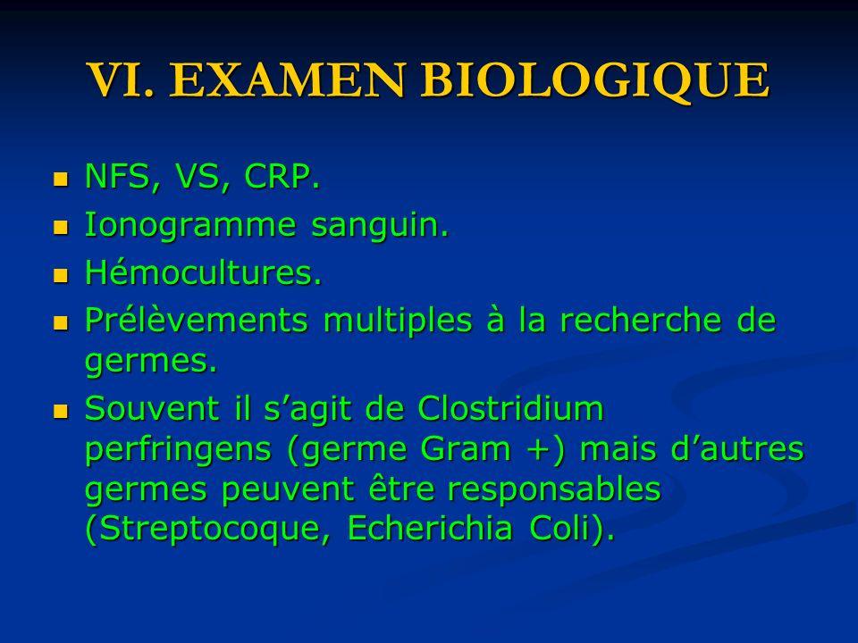 VI. EXAMEN BIOLOGIQUE NFS, VS, CRP. Ionogramme sanguin. Hémocultures.