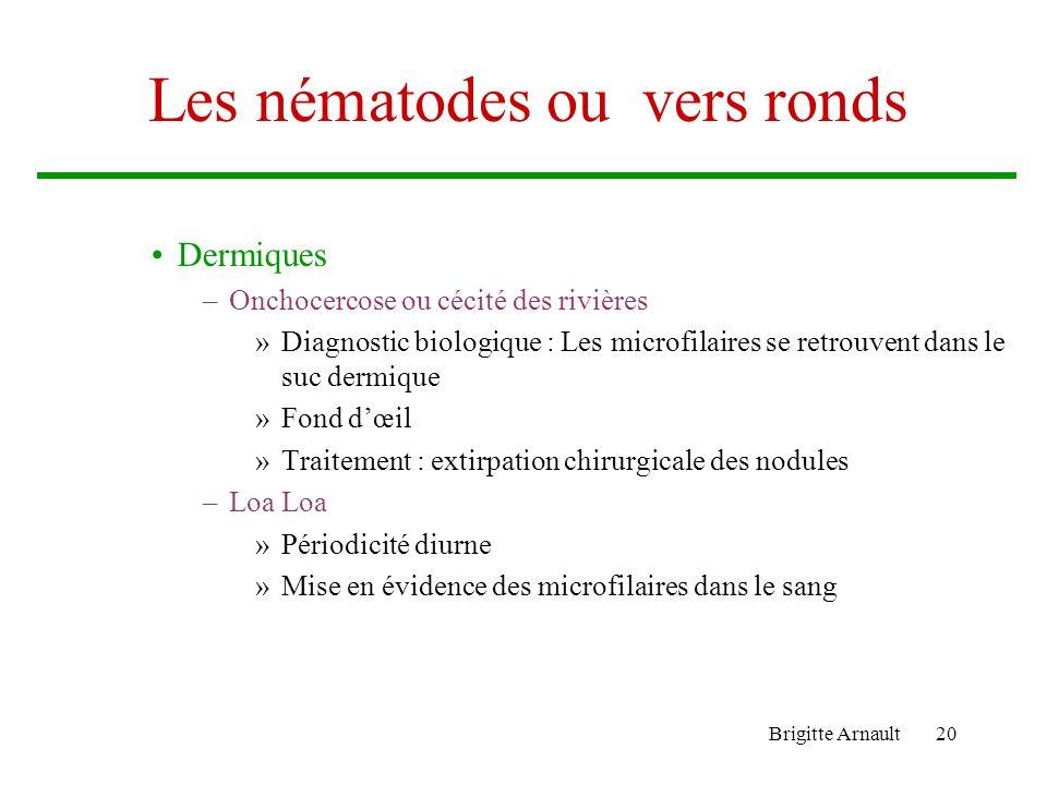 Les nématodes ou vers ronds