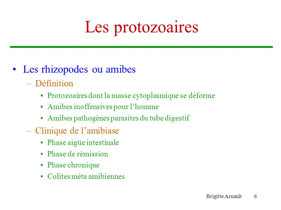 Les protozoaires Les rhizopodes ou amibes Définition