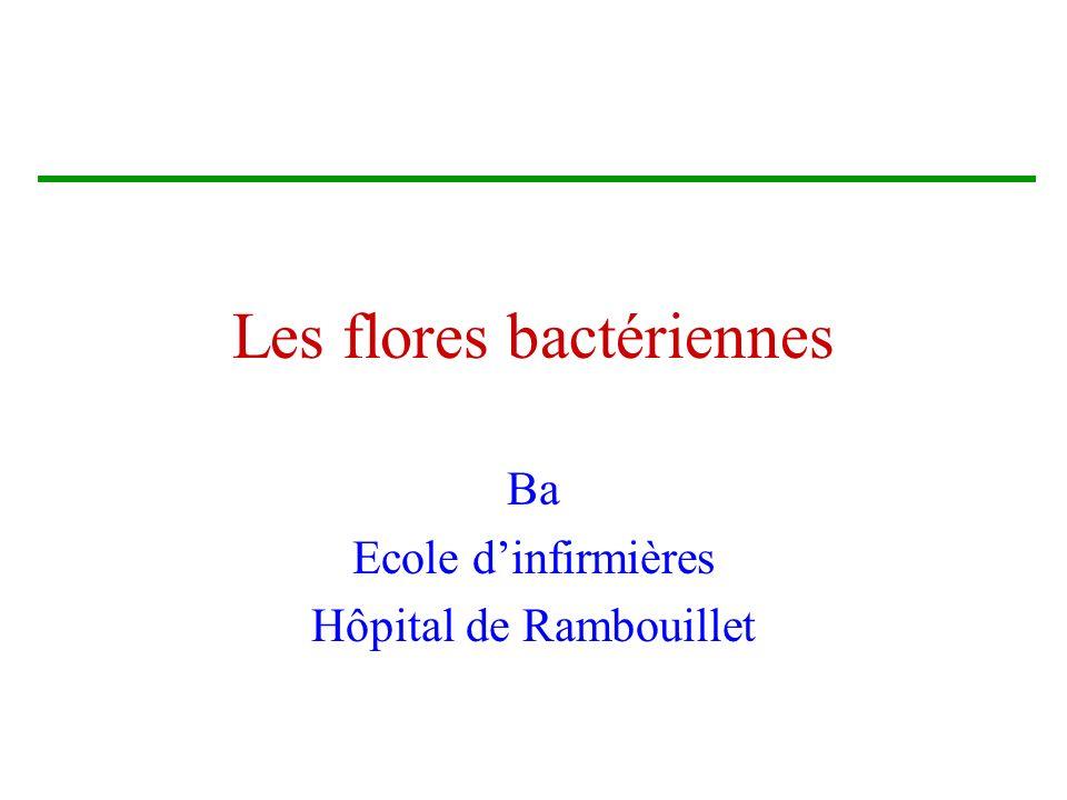 Les flores bactériennes