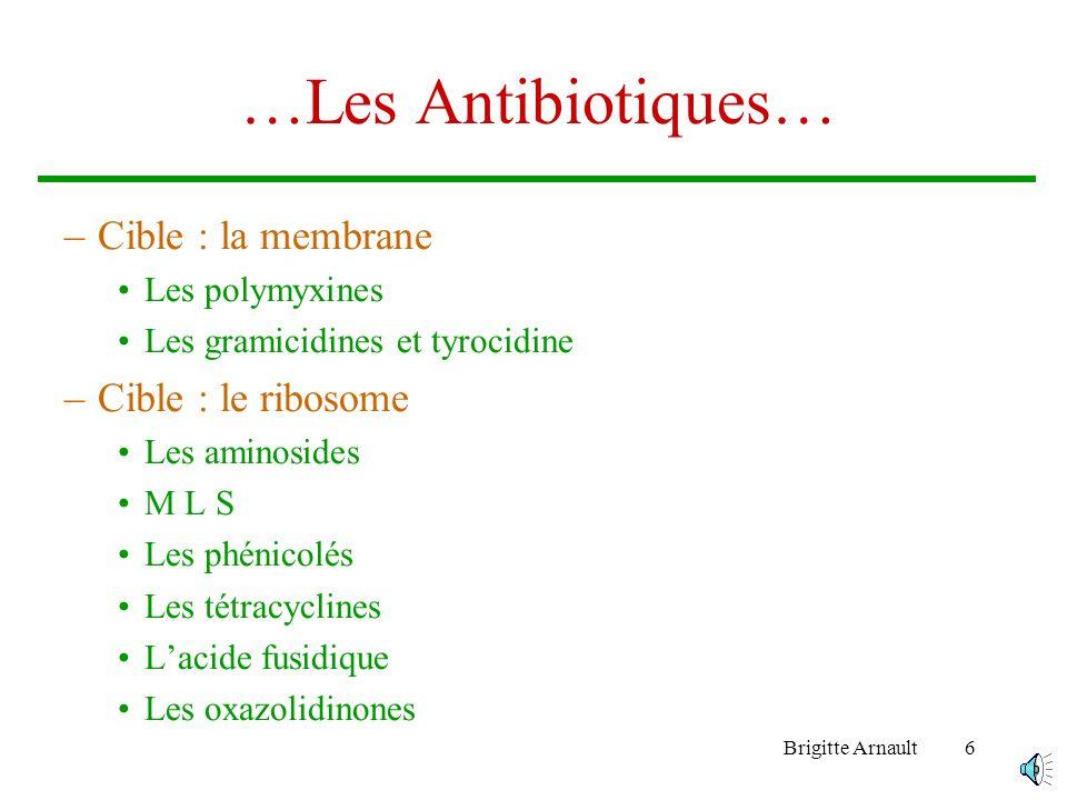 …Les Antibiotiques… Cible : la membrane Cible : le ribosome
