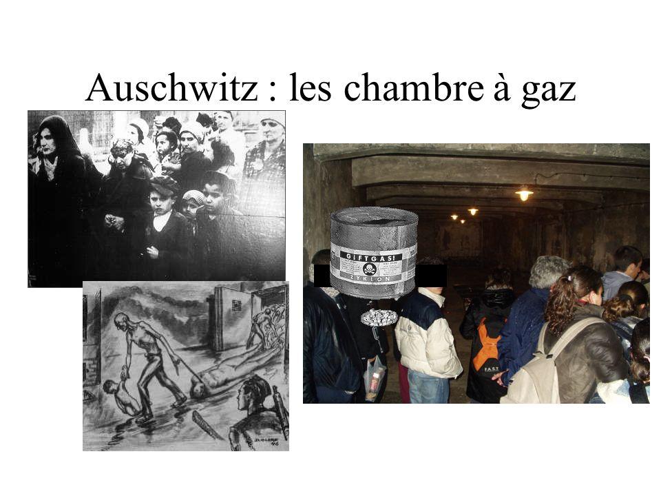 Idees d chambre chambre a gaz auschwitz dernier design for Auschwitz chambre a gaz
