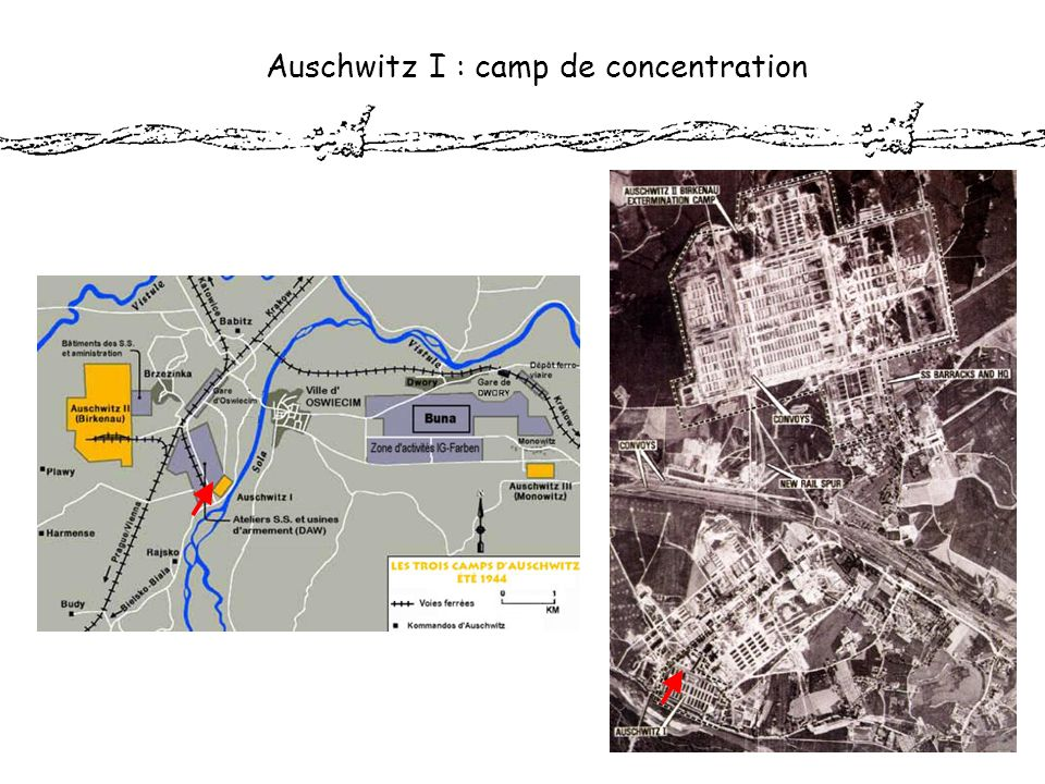 Auschwitz I : camp de concentration