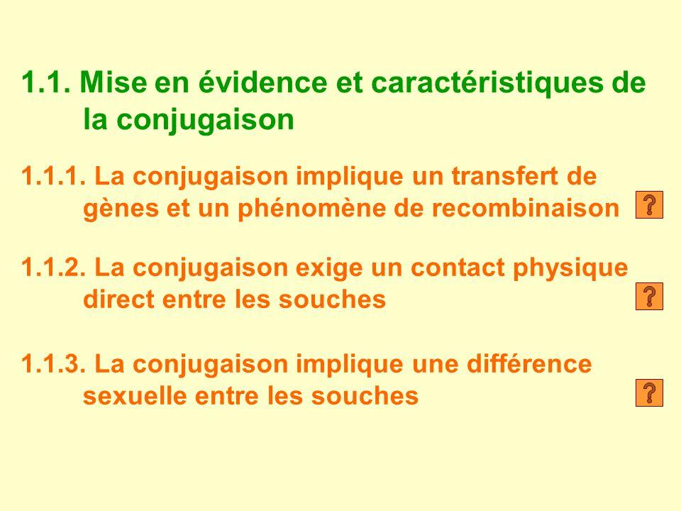 1.1. Mise en évidence et caractéristiques de la conjugaison