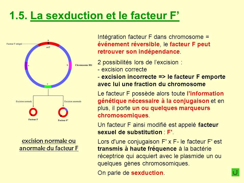 excision normale ou anormale du facteur F