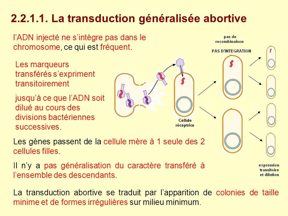 2.2.1.1. La transduction généralisée abortive