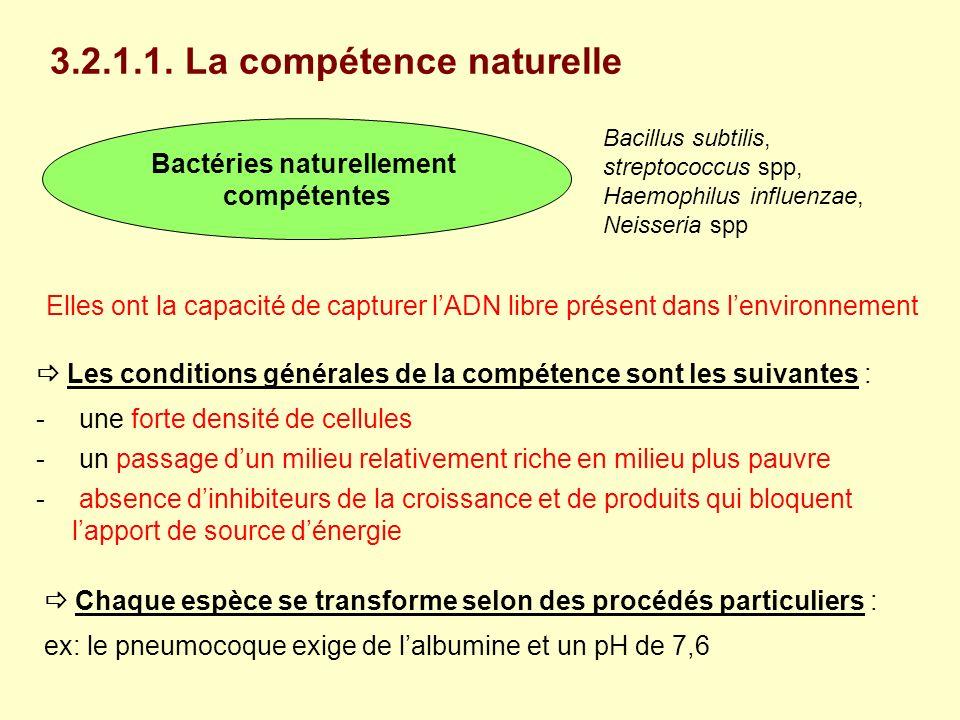 Bactéries naturellement