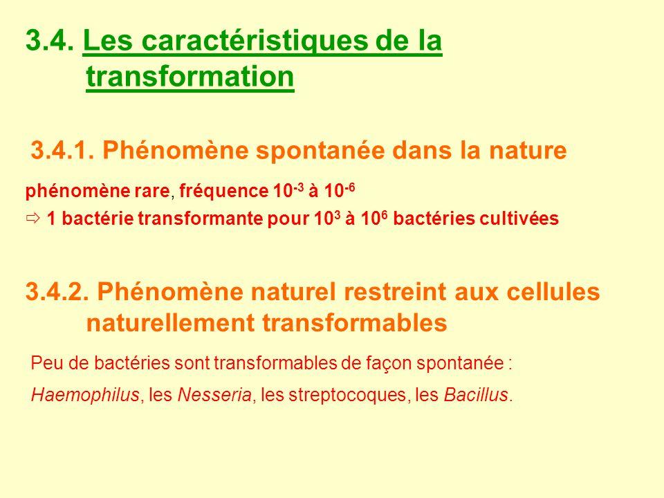 3.4. Les caractéristiques de la transformation