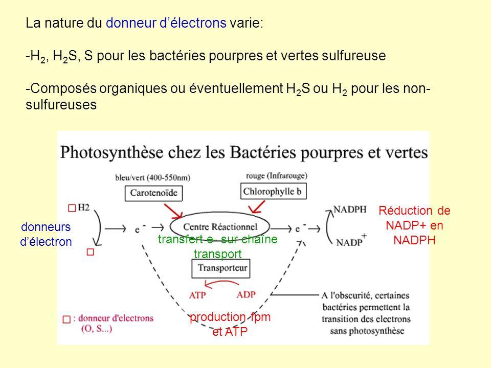 La nature du donneur d'électrons varie: -H2, H2S, S pour les bactéries pourpres et vertes sulfureuse -Composés organiques ou éventuellement H2S ou H2 pour les non-sulfureuses